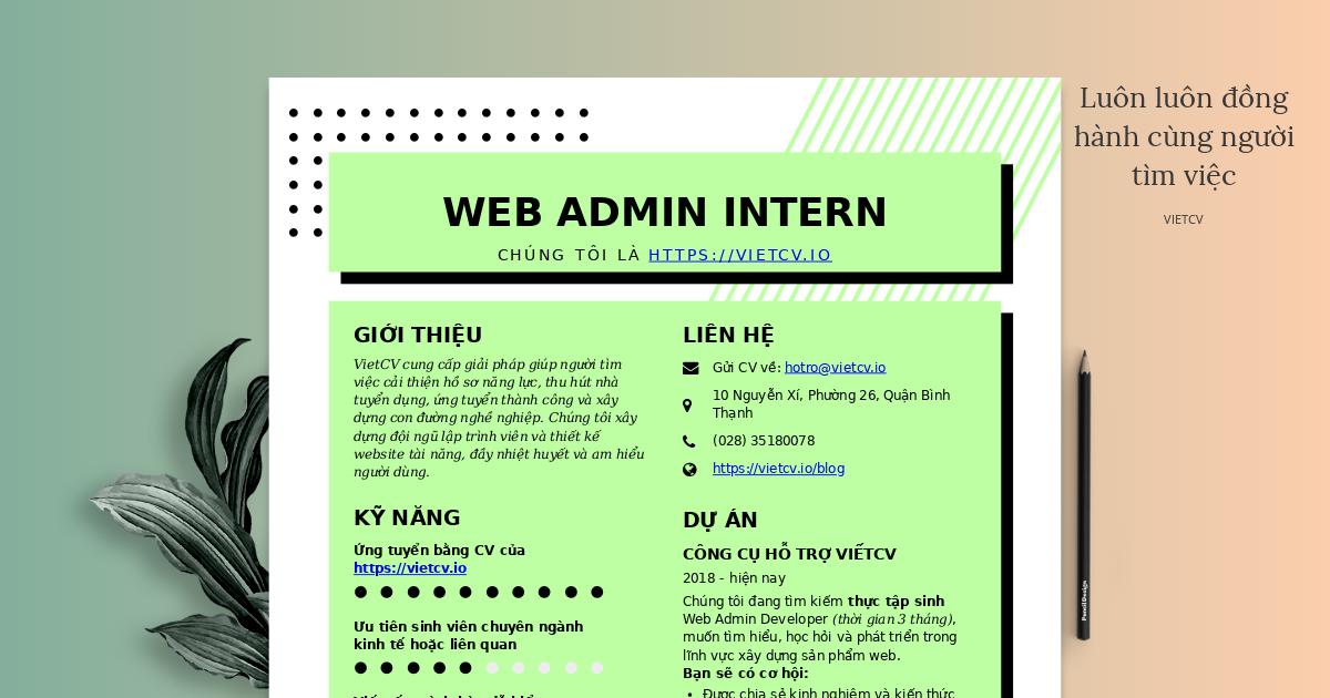 VietCV tuyển dụng Web Admin Intern